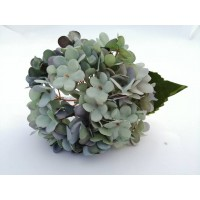 Hortensias Artificiales