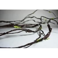 bambu curly varas branch varas